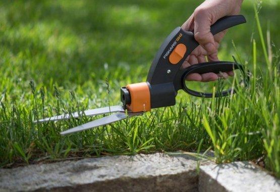 Detaliai pasirūpinkite savo veja kiekviename kamputyje