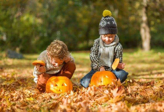 Pasitikite Heloviną su Fiskars