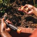 Solid sodinimo įrankis